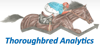 Thoroughbred Analytics